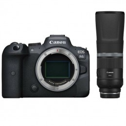 Canon EOS R6 + RF 800MM F/11.0 IS STM
